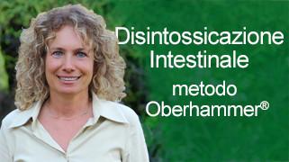 disintossicazione intestinale menu