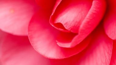 I Disturbi della Menopausa: Risolverli Positivamente