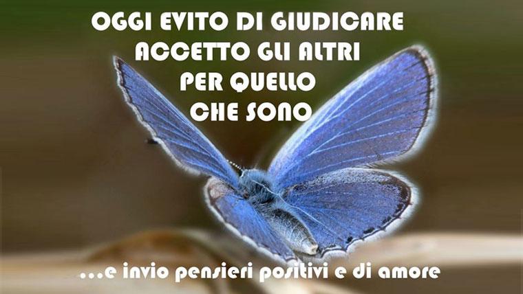 Farfalla blu in volo, cogliere gli aspetti positivi